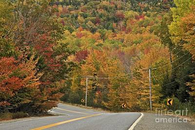 Photograph - Painted Drive by Karin Pinkham