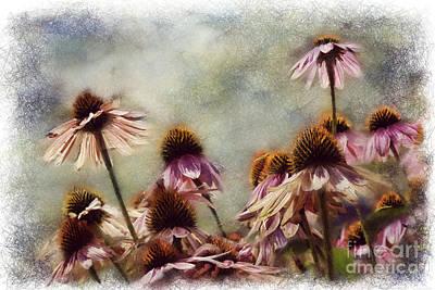 Painter Digital Art - Painted Echinacea 2 by Sari Sauls