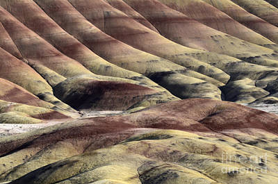 Painted Hills Oregon 11 Art Print by Bob Christopher