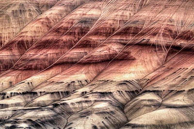 Central Photograph - Painted Hills Oregon Closeup Abstract by David Gn