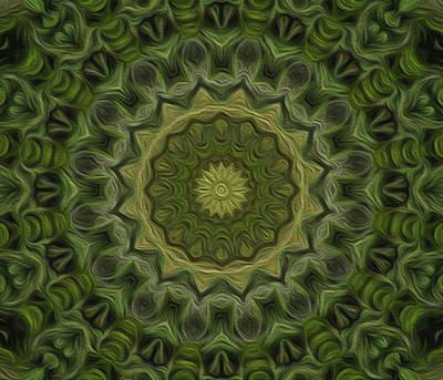 Digital Art - Painted Kaleidoscope 11 by Rhonda Barrett