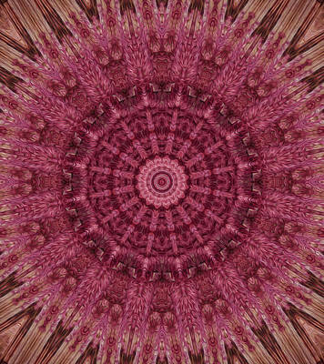Digital Art - Painted Kaleidoscope 12 by Rhonda Barrett