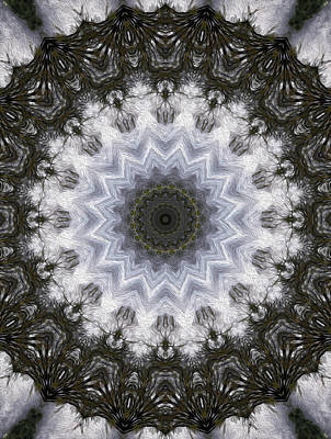 Digital Art - Painted Kaleidoscope 16 by Rhonda Barrett