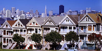 Painted Ladies Art Print by Ron Smith