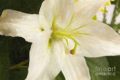 Digital Art - Painted Lilly Flower 8032.02 by M K Miller