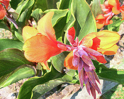 Art Print featuring the photograph Painted Lily by Larry Bishop