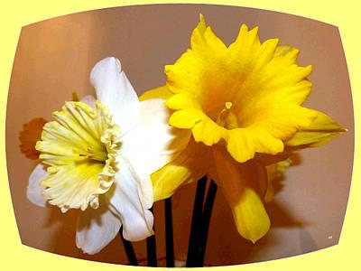 Daffodils Digital Art - Painted Okanagan Daffodils by Will Borden