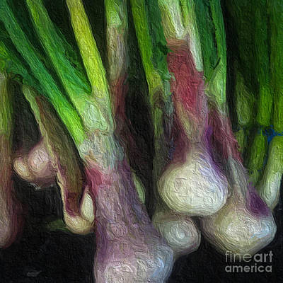 Onion Digital Art - Painted Onions by Amy Cicconi