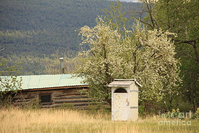 Painted Outhouse Original