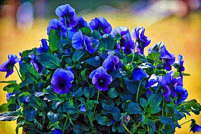 Photograph - Painted Pansies by HH Photography of Florida
