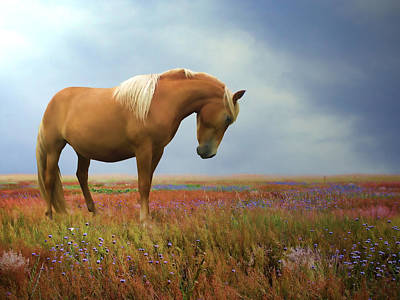 Wild Horse Digital Art - Painted Pastures by Sharon Lisa Clarke