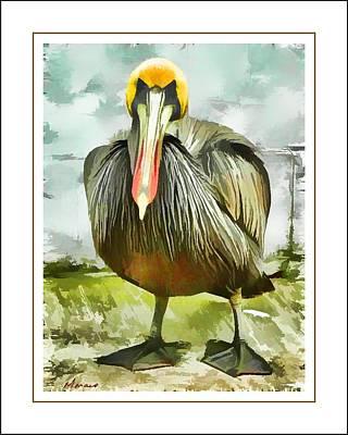 Painted Pelican Art Print by Barry Monaco