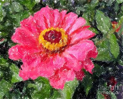 Photograph - Painted Pink Photograph by Donna Cavanaugh