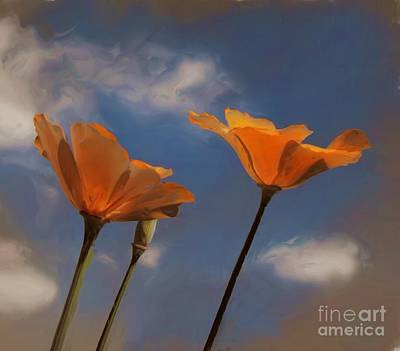 Photograph - Painted Poppies by Tom Griffithe