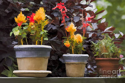 Photograph - Painted Pots by Michael Flood