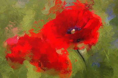 Laura James Photograph - Painted Red Poppies by Laura James
