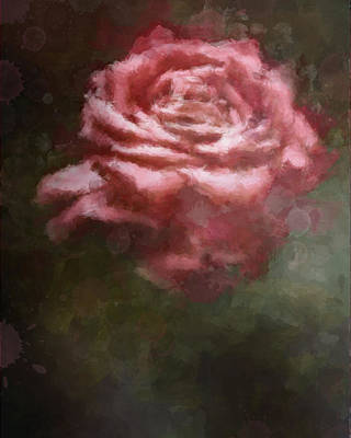Digital Art - Painted Rose II by Stephanie Hollingsworth