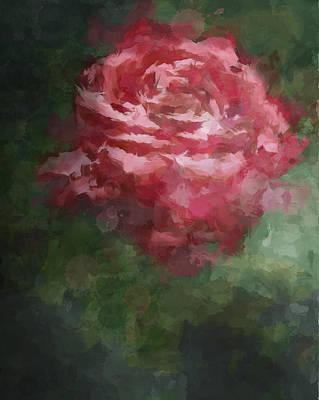 Digital Art - Painted Rose by Stephanie Hollingsworth