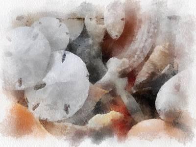 Painted Shells Original