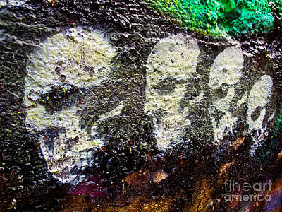 Fearlessness Photograph - Painted Skulls by Kelly Holm