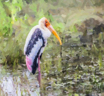 Digital Art - Painted Stork Mycteria Leucocephala by Liz Leyden