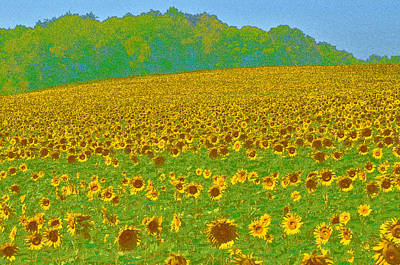 Digital Art - Painted Sunflower Field II by Eva Kaufman