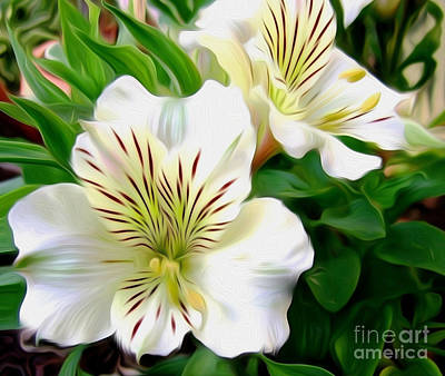 Painterly Alstroemeria Art Print by Kaye Menner