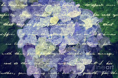 Digital Art - Painterly Hydrangea With Vintage Script Handwriting by Beverly Claire Kaiya