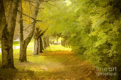 Painterly Pathway Art Print