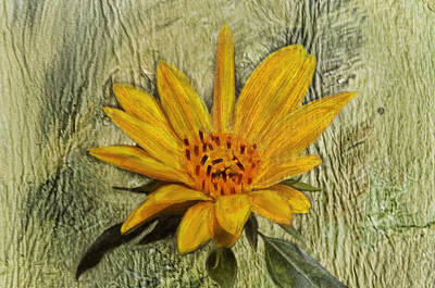 Painterly Sunflower Art Print