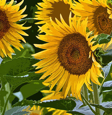 Photograph - Painterly Sunflowers by Bill Owen