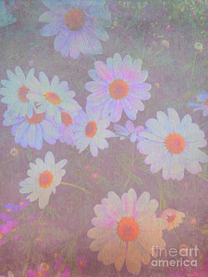 Photograph - Painterly White Daisies Potted Flowers by Beverly Claire Kaiya