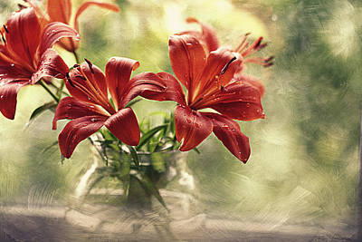 Red Daylily Photograph - Painting Daylilies On My Window by Maria Angelica Maira
