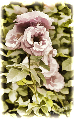 Painting - Painting Of A Live Pink Rose Flower In Color 3225.02 by M K Miller