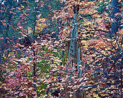 West Fork Painting - Painting Of Leaves by Brian Lambert