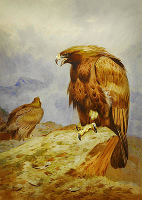 Beautiful Scenery Painting - Pair Of Golden Eagles by Celestial Images