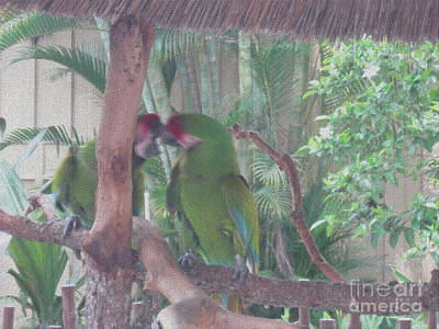 Digital Art - Pair Of Green Parrots by Oksana Semenchenko