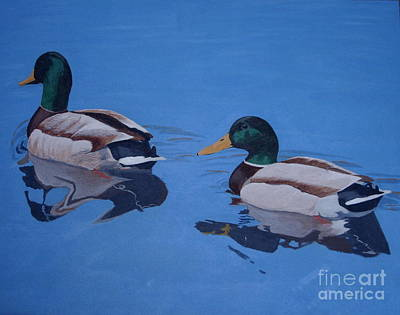 Pair Of Mallards Art Print