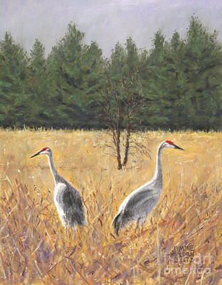 Crane Painting - Pair Of Sandhill Cranes by Jymme Golden