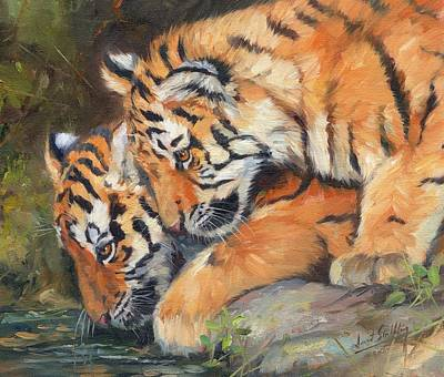India Wildlife Painting - Pair Of Tiger Cubs by David Stribbling