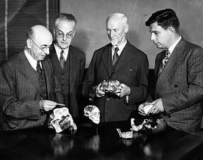 Palaeontologists Examining Skulls Art Print