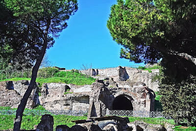 Photograph - Palatine Hill by Elvis Vaughn