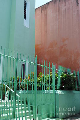 Photograph - Pale Green With Pink Walls by George D Gordon III