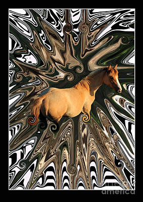 Abstract Digital Photograph - Pale Horse by Aidan Moran