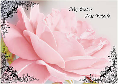 Photograph - Pale Pink Rose Greeting Card Sister by Debbie Portwood