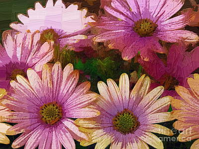 Photograph - Pale Pinks by Diane Miller