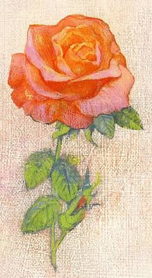 Still Life Of Flowers Painting - Pale Rose by George Adamson
