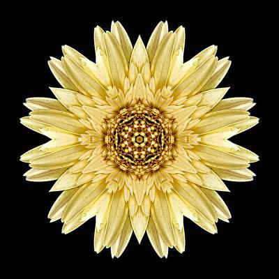 Print featuring the photograph Pale Yellow Gerbera Daisy I Flower Mandala by David J Bookbinder