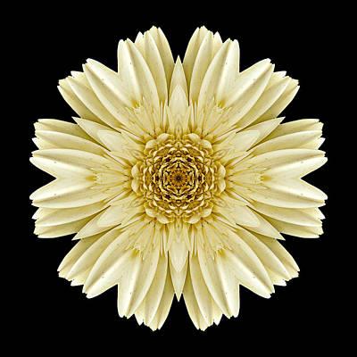 Print featuring the photograph Pale Yellow Gerbera Daisy IIi Flower Mandala by David J Bookbinder