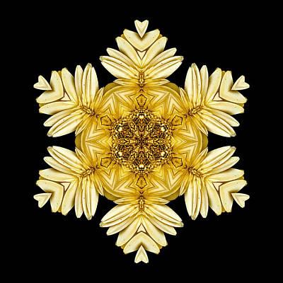 Pale Yellow Gerbera Daisy Vii Flower Mandalaflower Mandala Art Print